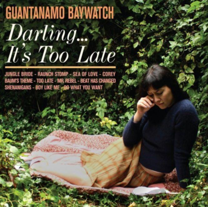 Guantanamo Baywatch too late