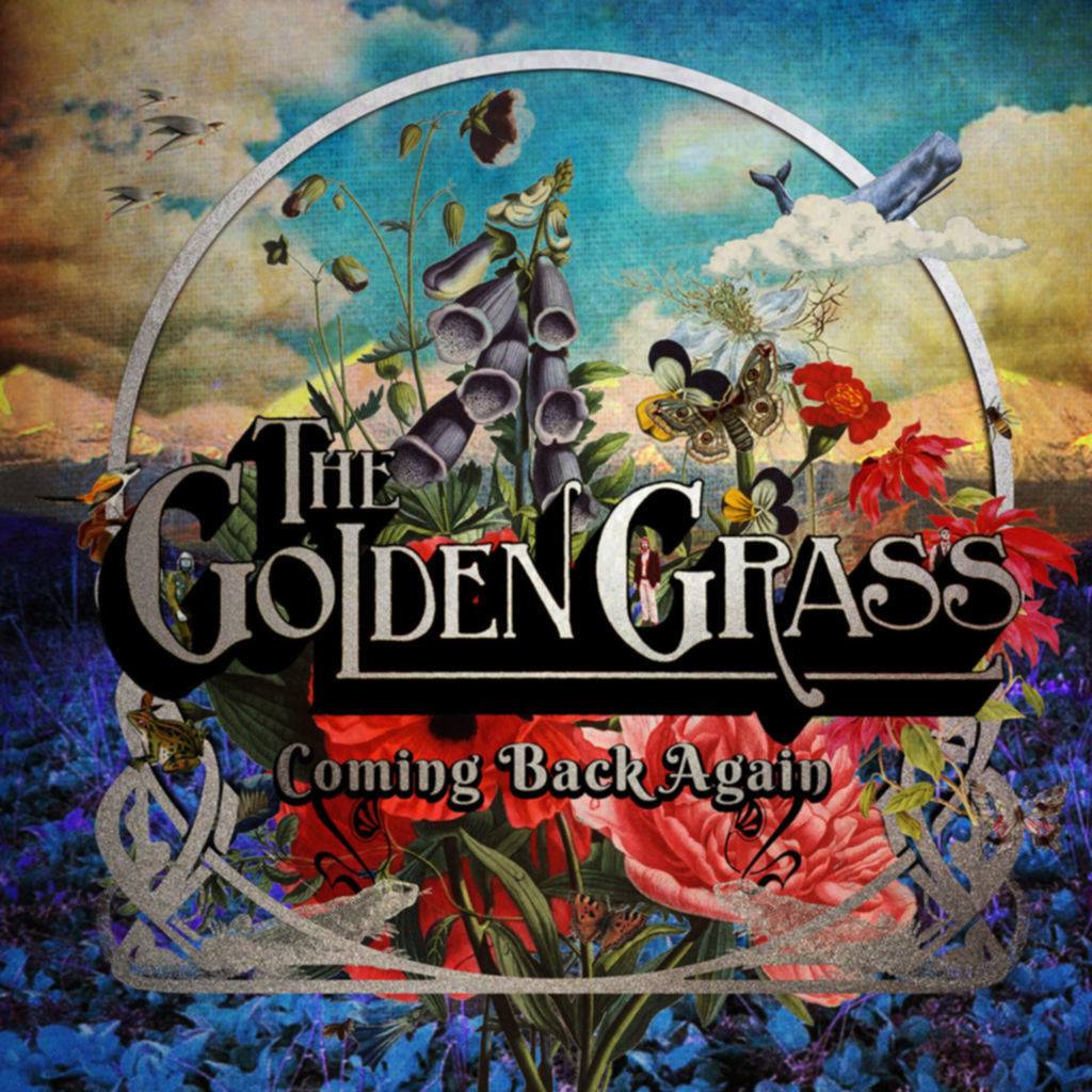 THE GOLDEN GRASS coming back again
