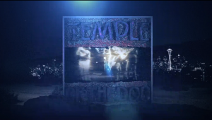 temple of the dog black cat