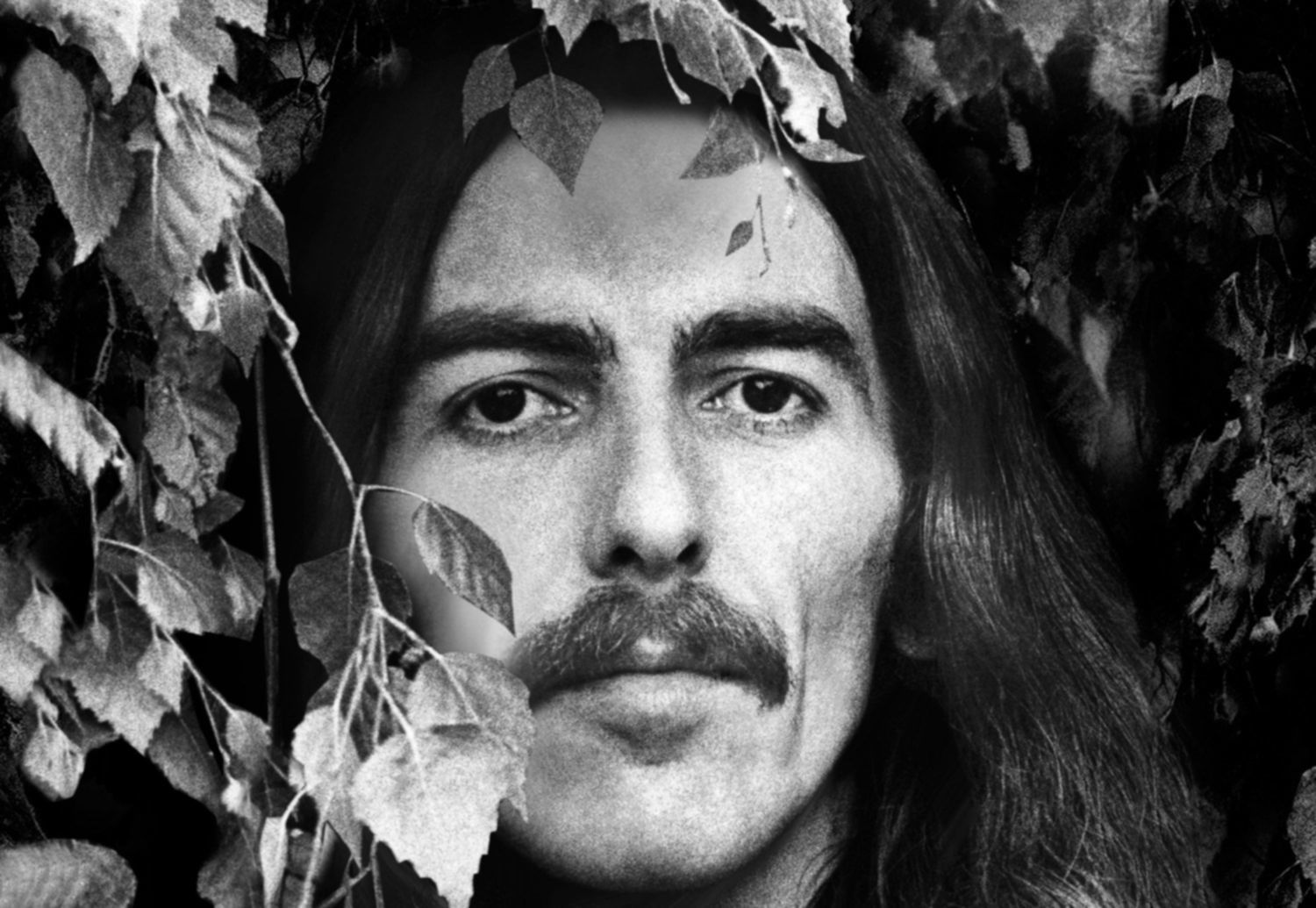 Review: George Harrison – THE VINYL COLLECTION 1968–2002
