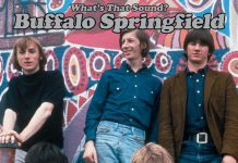Buffalo Springfield Complete Albums Collection