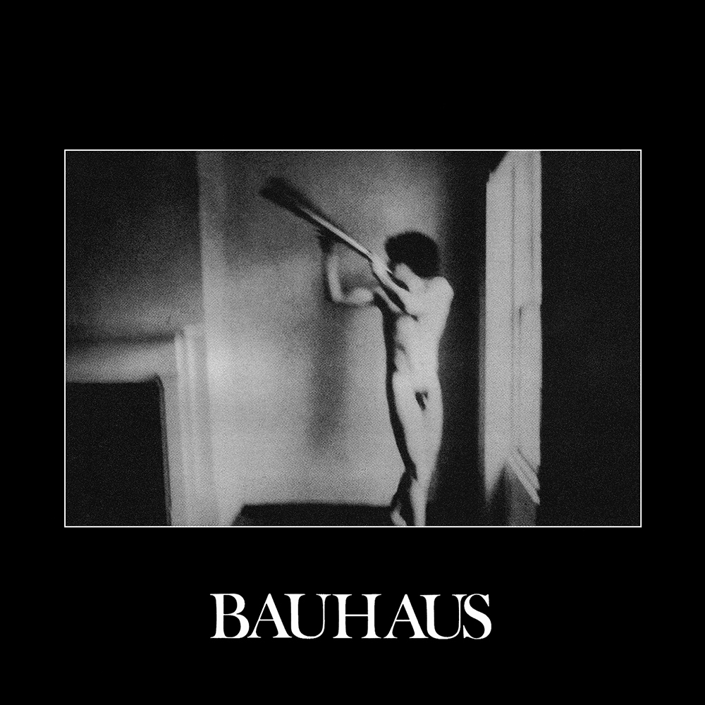 Bauhaus---In-The-Flat-Field