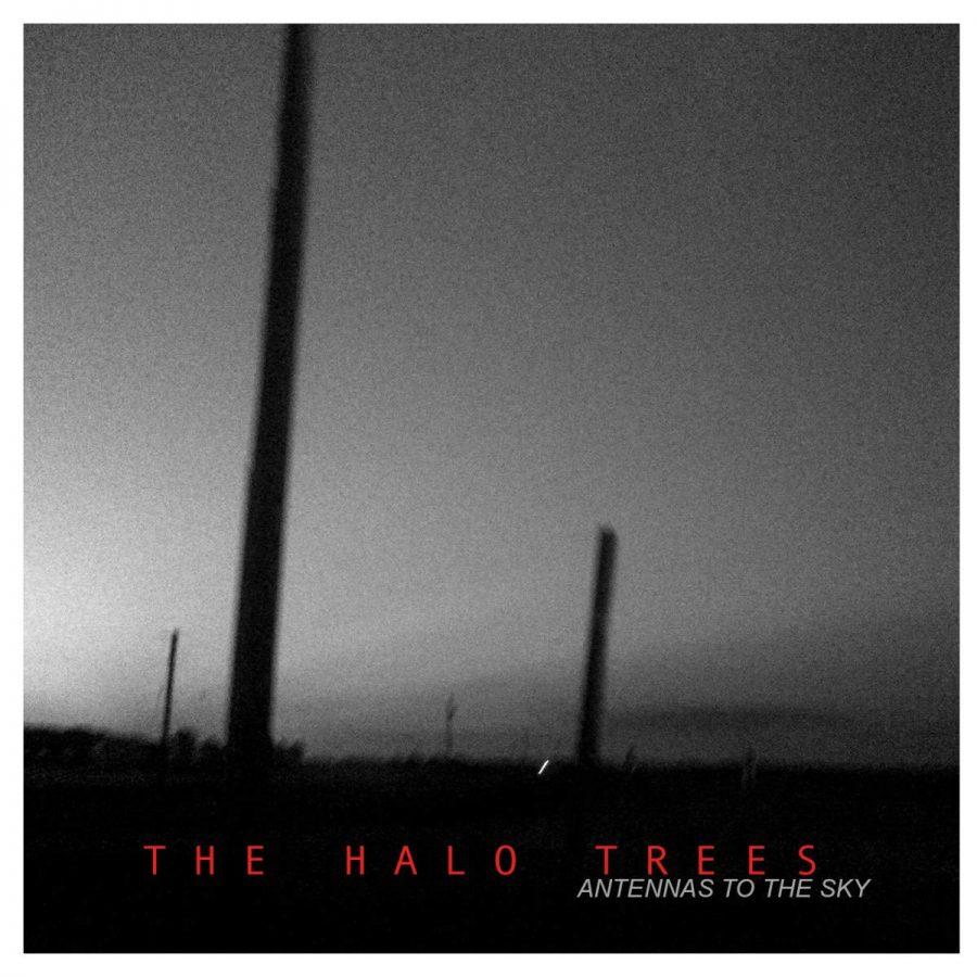 The Halo Trees Antennas To The Sky