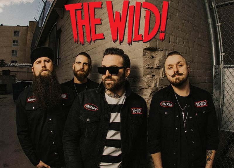 The Wild im Live-Stream